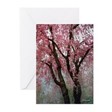 Weeping Cherry Tree - Large Notecards (Pk of 10)