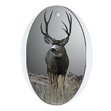 deer Ornament (Oval)