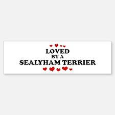 Loved: Sealyham Terrier Bumper Car Car Sticker