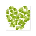 ginkgo-heart_tr.png Square Sticker 3