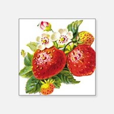 "vic-strawberry.png Square Sticker 3"" x 3"""