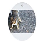 squirrel_nc.jpg Ornament (Oval)