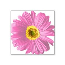 "pop-daisy_pk.png Square Sticker 3"" x 3"""