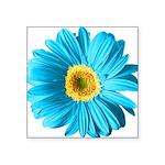 pop-daisy_bu.png Square Sticker 3
