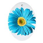 pop-daisy_bu.png Ornament (Oval)