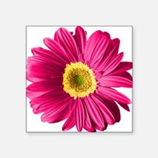 "pop-daisy_fs.png Square Sticker 3"" x 3"""