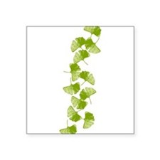 """ginkgo_y.png Square Sticker 3"""" x 3"""""""