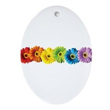 pop-daisy-rainbow.png Ornament (Oval)