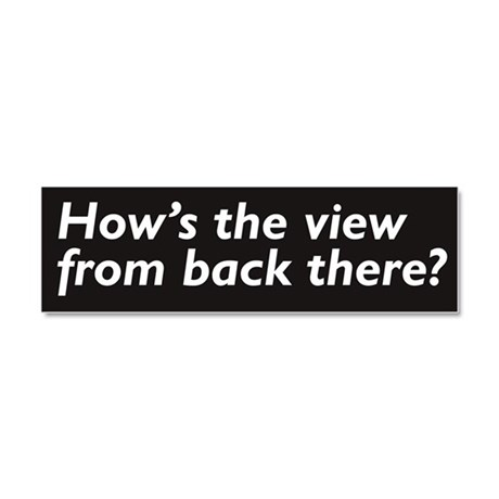 Hows the view? Car Magnet 10 x 3