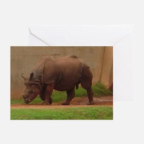 black rhino Greeting Cards (Pk of 10)