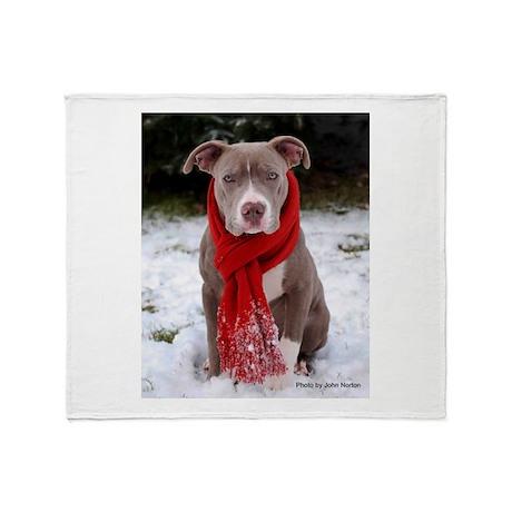 Winter Pit Bull Throw Blanket