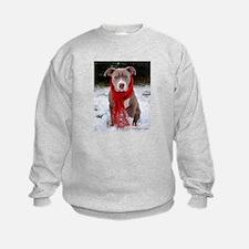 Winter Pit Bull Sweatshirt