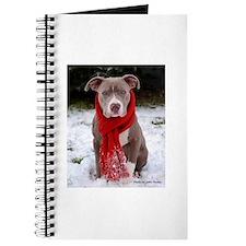 Winter Pit Bull Journal