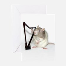 Buttercup Harp Greeting Cards (Pk of 10)