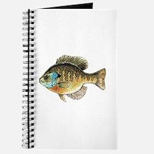Bluegill Bream Fishing Journal