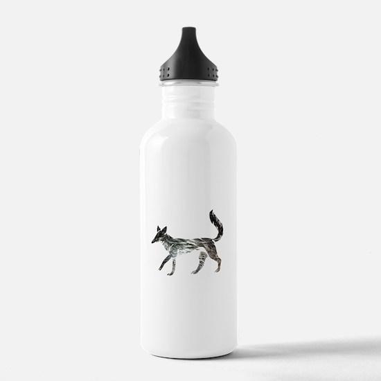 The Aging Silver Fox Water Bottle