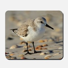 Sand Piper and Seashells Mousepad