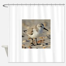 Sand Piper and Seashells Shower Curtain