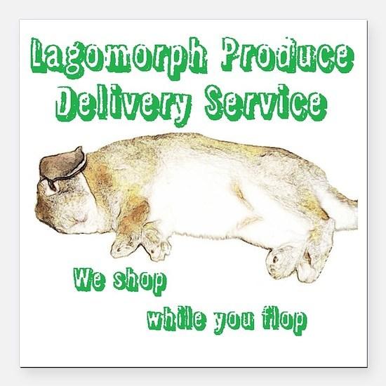 "Lagomorph Produce Delive Square Car Magnet 3"" x 3"""