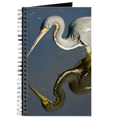 Tricolor Reflection Journal