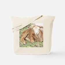 Newborn Lamb Tote Bag