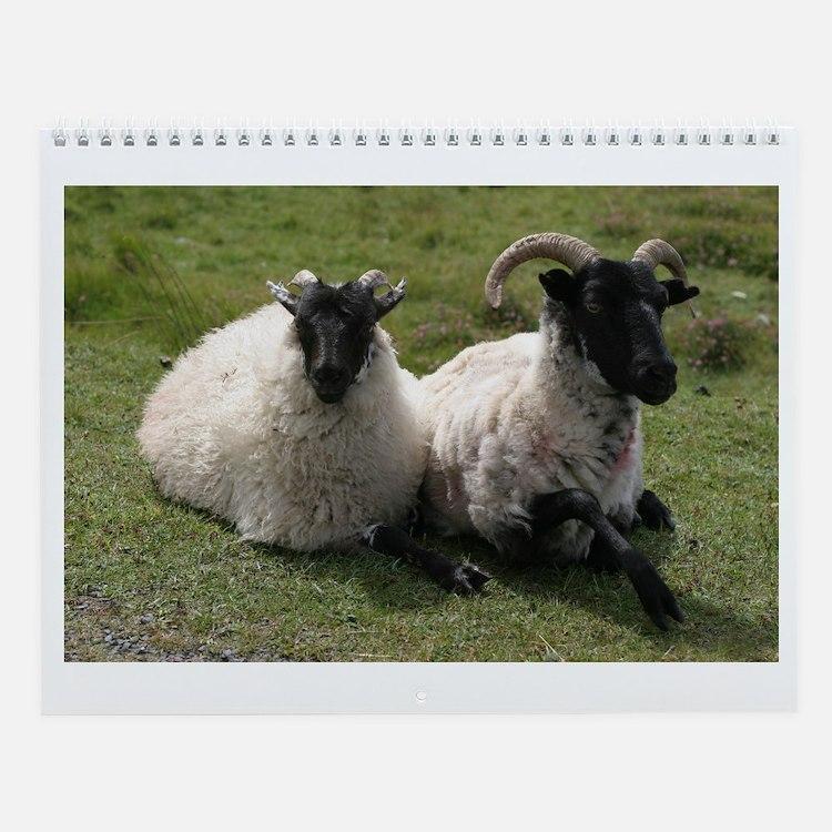 All Sheep All Year Wall Calendar