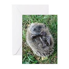 Chris's Cutie Greeting Cards (Pk of 10)