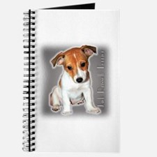Jack Russell Puppy Journal