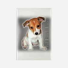 Jack Russell Puppy Rectangle Magnet