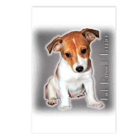 Jack Russell Puppy Postcards (Package of 8)
