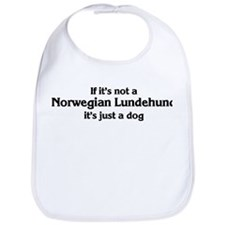 Norwegian Lundehund: If it's  Bib