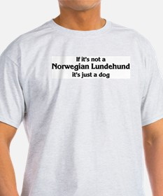 Norwegian Lundehund: If it's  Ash Grey T-Shirt