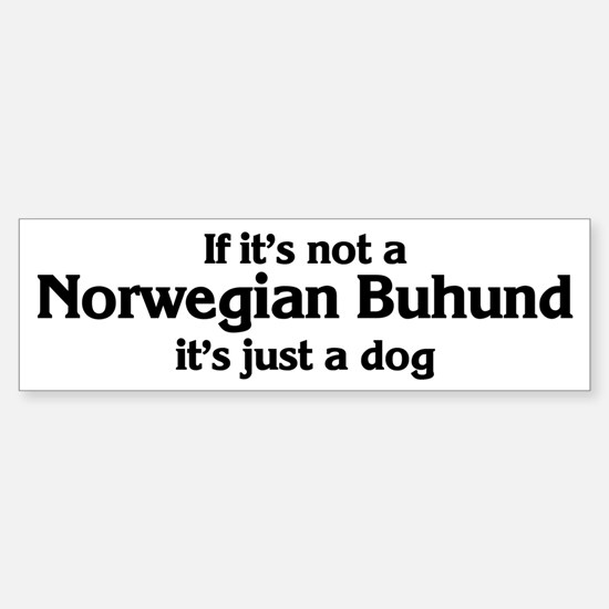 Norwegian Buhund: If it's not Bumper Bumper Bumper Sticker