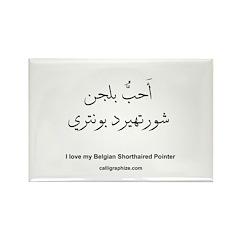 Belgian Shorthaired Pointer Rectangle Magnet (10 p