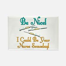 Be Nice - Nurse Humor Rectangle Magnet (100 pack)