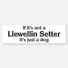 Llewellin Setter: If it's not Bumper Bumper Bumper Sticker