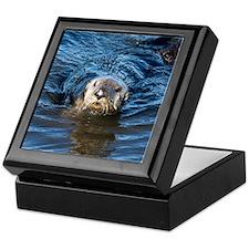 Alaska Sea Otter Keepsake Box