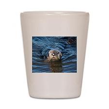 Alaska Sea Otter Shot Glass