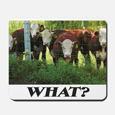 Herefords Mousepad
