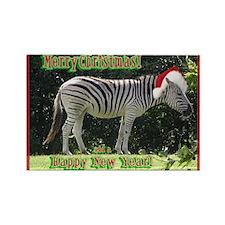 Helaine's Zebra Christmas Rectangle Magnet (100 pa