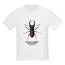 Stag Beetle Kids T-Shirt