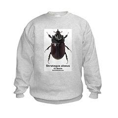 Ox Beetle Sweatshirt