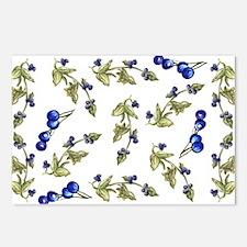 vines of blueberries Postcards (Package of 8)