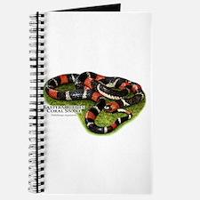 Eastern Ribbon Coral Snake Journal