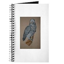African Timneh Grey Journal