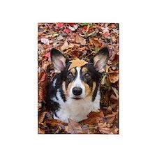 Corgi and Fall Leaves 5'x7'Area Rug