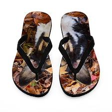 Corgi and Fall Leaves Flip Flops