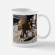 Boldog Damien Retrieving 2 Mug