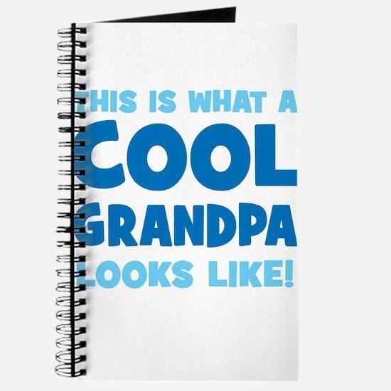 WhatCoolGrandpaLooksLike copy Journal