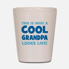 WhatCoolGrandpaLooksLike copy Shot Glass